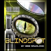 BLINDSPOT BY BOB SWADLING